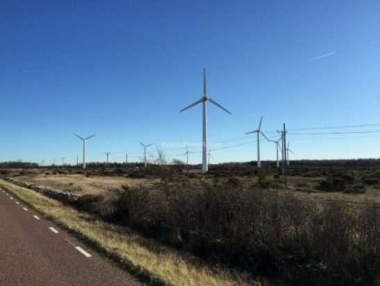 Vestas V29 Windfarm